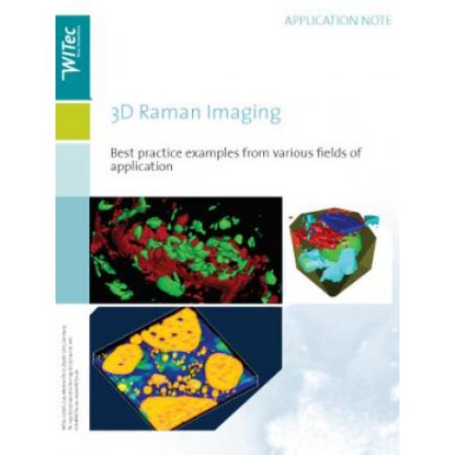 3D Confocal Raman Imaging of Bulky Geological Samples