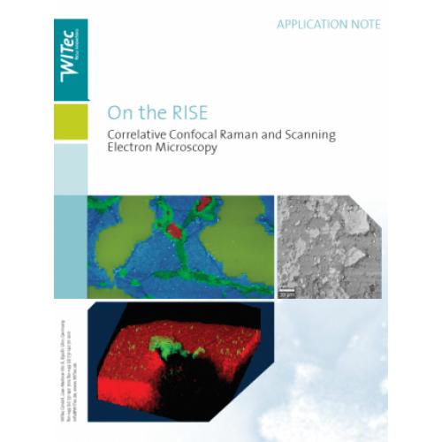 Correlative Confocal Raman and Scanning Electron Microscopy