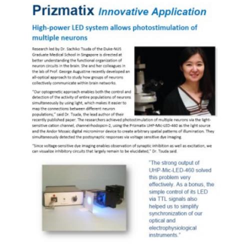 Using micromirror-based optogenetic photostimulation...