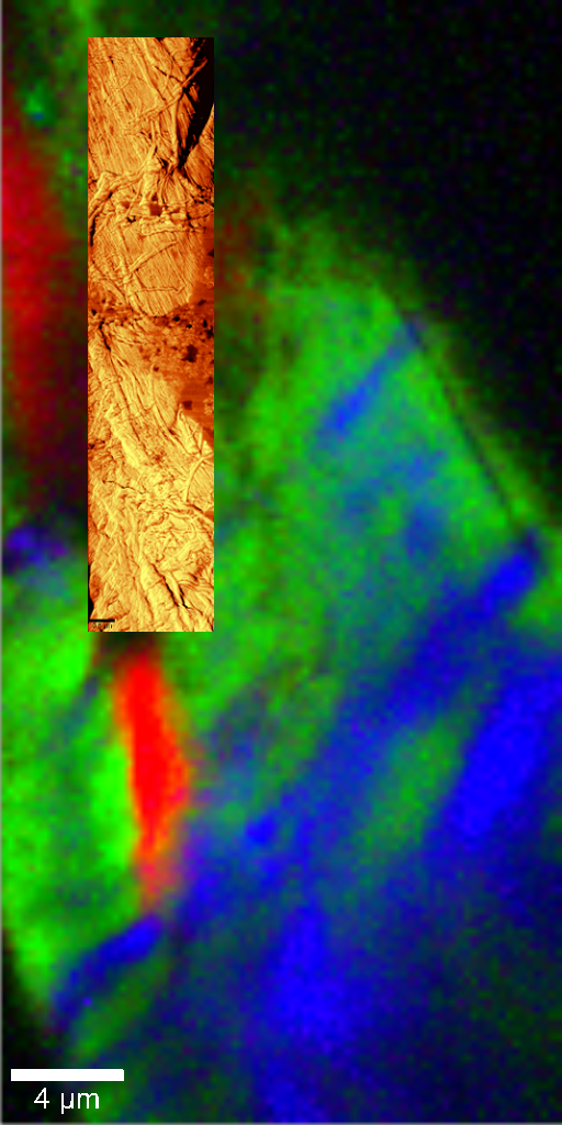 Confocal Raman AFM images of traces of wood extractives on cellulose fibres