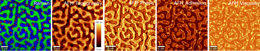 Combined Raman-AFM measurement of the same sample area of a multicomponent polymer blend